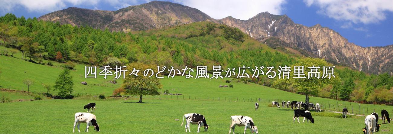 四季折々のどかな風景が広がる清里高原